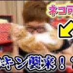 あの大物YouTuberとついにコラボ!?可愛い猫ちゃんも一緒です!