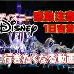 【Disneyに行きたくなる動画】リクエスト動画♥感動あり