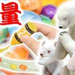 【ガチャガチャ】スライムキット が可愛い!新作スクイーズ&スライム 開封&紹介【ガチャガチャの森】アジーンTV