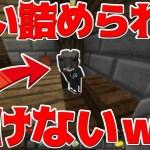 【Minecraft】追い詰められて動けないのかわいいw殺人ゲームマーダー実況プレイ!