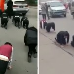 【世界驚きニュース】ノルマ達成できない社員を四つん這いで歩かせるブラック企業  、「バードボックス・チャレンジ」で17歳の少女が衝突事故 … – トモニュース