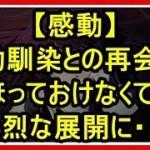【感動】幼馴染との再会、ほっておけなくて、壮烈な展開に・・!!