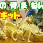 難しいけど面白いガチャ 恐竜の 骨 & ねんど 制作キット 全12種類を開封紹介!Dinosaur bones & Clay Toy Kids