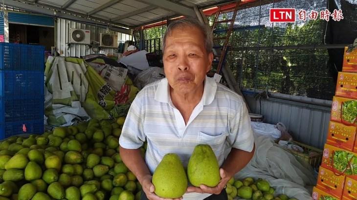 各界伸援入園採柚 感動80歲中風老農