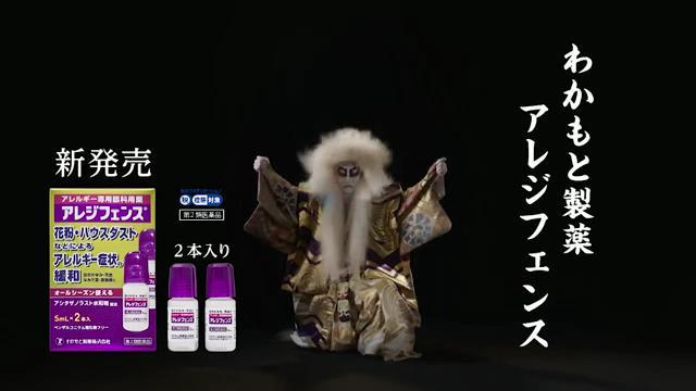 日本舞踊家 藤間貴彦 が出演する わかもと製薬 アレジフェンス のCM「かゆみの舞い」篇
