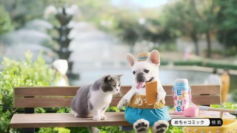 めちゃコミック cm 猫マンチカン