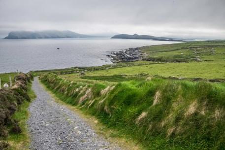 Ireland1024-4922