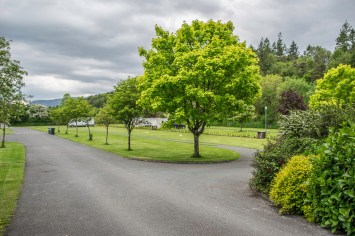 Ireland-5470
