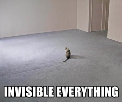 lolcat_invisible_everything