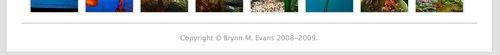 Brynn - blog footer