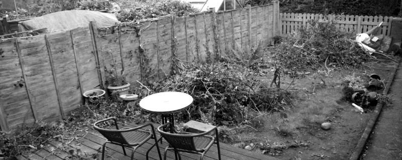 Chainsaw gardening