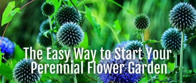 easy-perennial-garden
