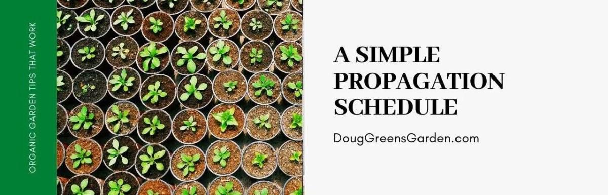 propagation schedule