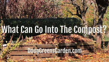 what goes into compost
