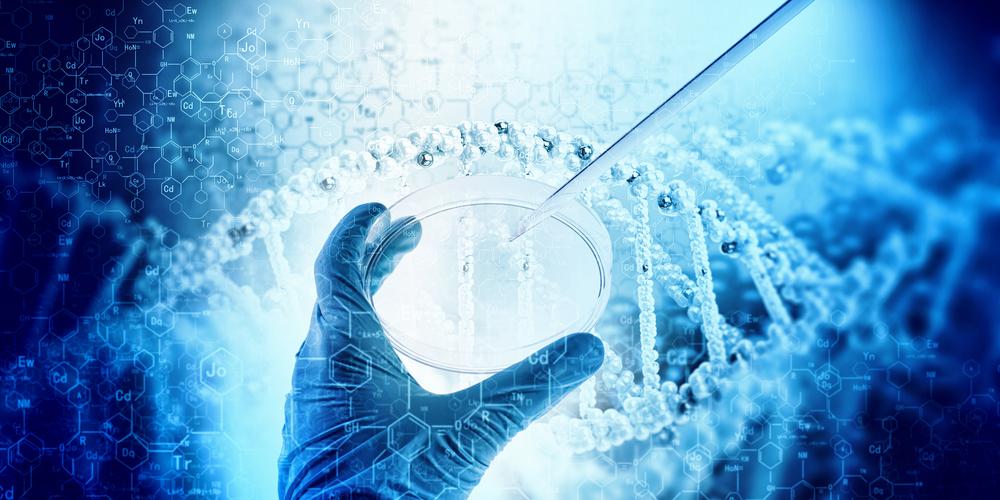 Extracting Cultural DNA