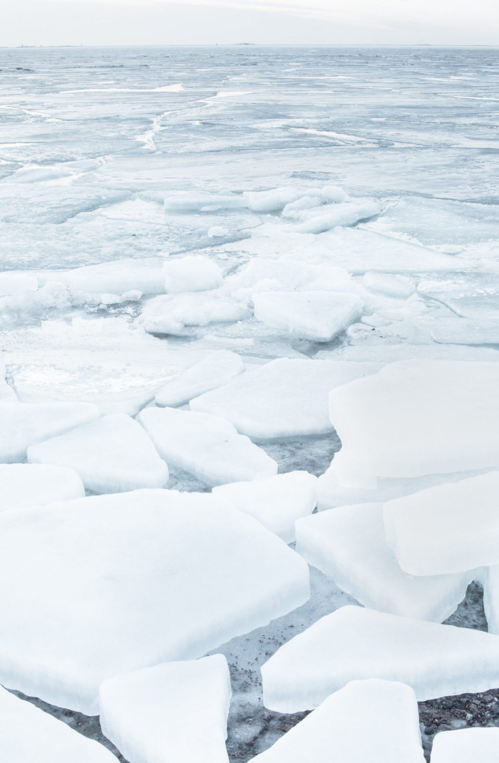 douglas shire rates freeze