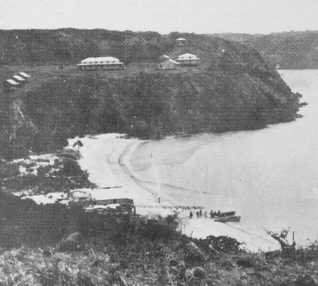 A photograph of Somerset in 1866, at the top of Cape York, two years after its settlement showing two mature coconut palms growing on the littoral edge of the beach.