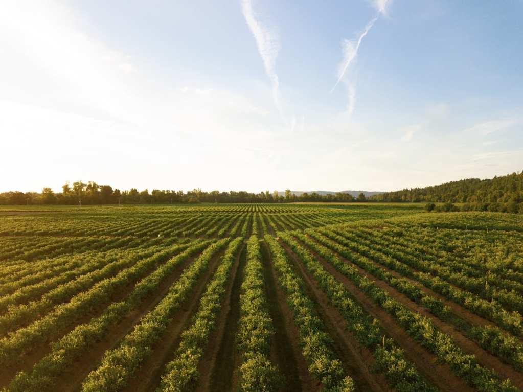 iucn agriculture report
