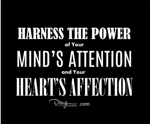 minds attention hearts affection