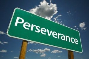 Perseverance and Time