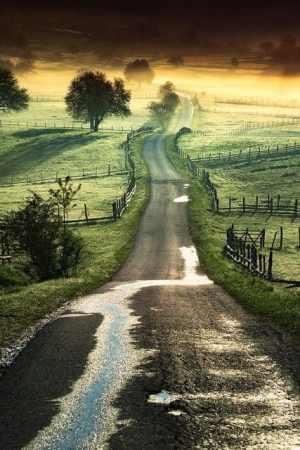 open-road-7