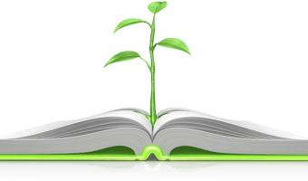 Themes in Proverbs: Truth and Lies