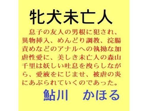 https://www.dmm.co.jp/dc/doujin/-/detail/=/cid=d_205259/