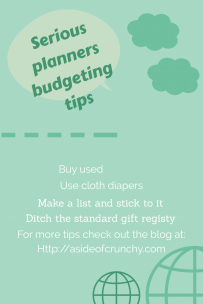 Serious planners budgeting a baby