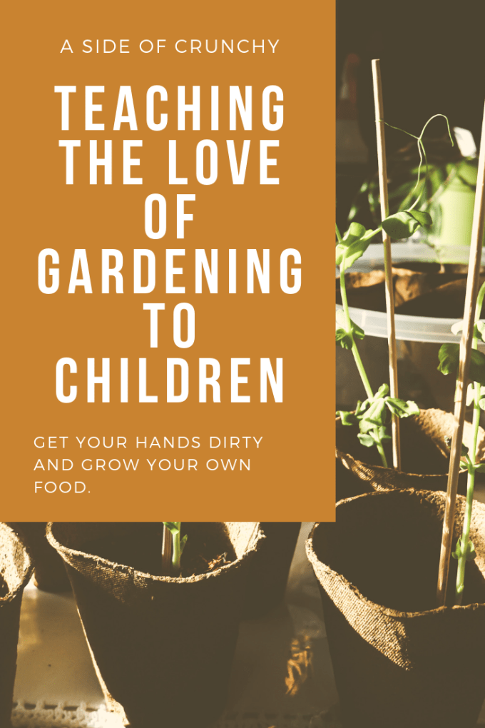 Gardening is a great family activity but children can learn that same love and use it to help them find focus. teaching the love of gardening. gardening with children. kid gardens. growing plants. growing herbs.