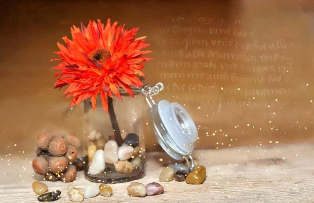 flower-689344_960_720