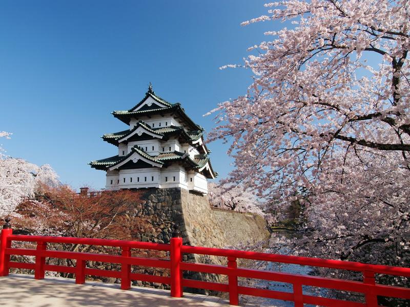 弘前公園桜祭り