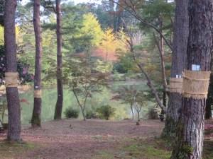 福知山三段池