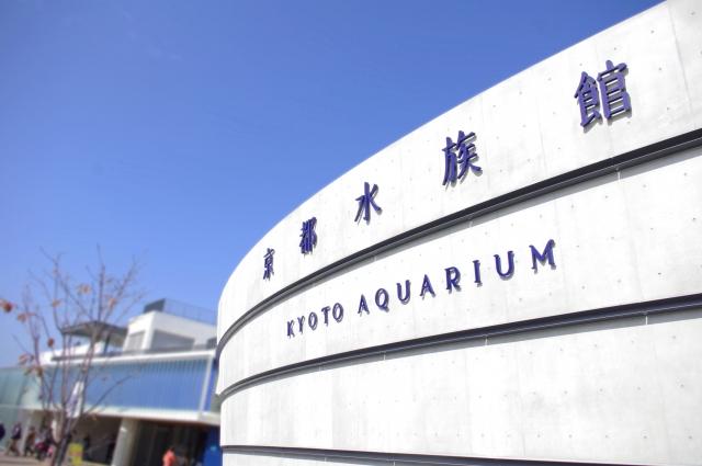 京都 水族館 穴場駐車場