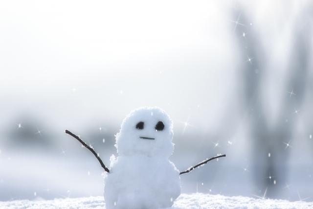 雪のうんちく