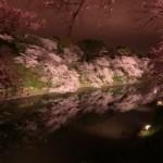 千鳥ヶ淵桜ライトアップ
