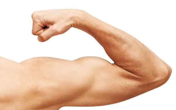 aumentar testosterona tratamento medico andropausa