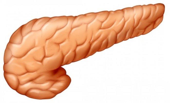 pancreas diabetes tratamento medico insulina