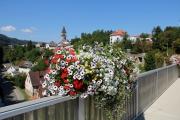 <h5>Flowertown Judenburg</h5>