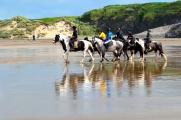 <h5>Horseriding on Tullan strand</h5><p></p>