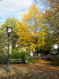 heidelberg autumn