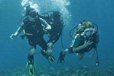 Kurzy potápìní na Bali s èeským instruktorem