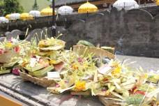Tirta Empul Bali. Pro bohy vše