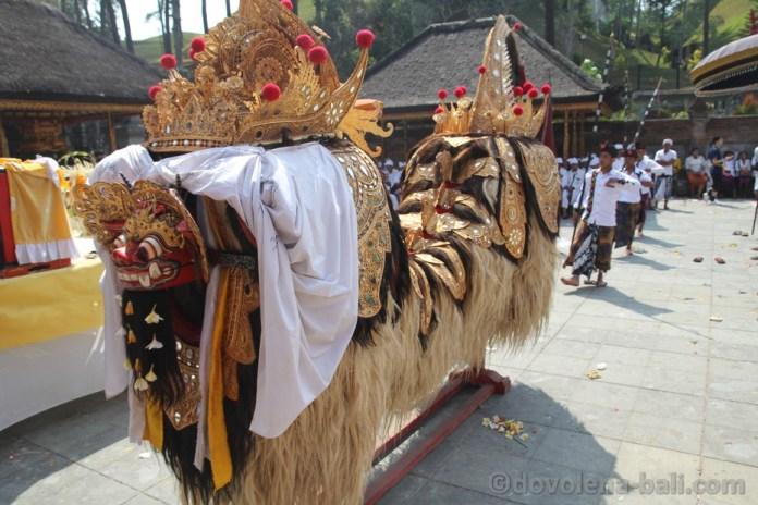 Barong - balijský tygr