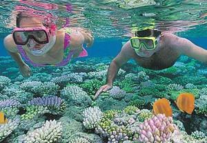 Snorkelmateriaal en cursussen