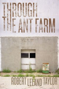 Through the Ant Farm by Robert Leland Taylor