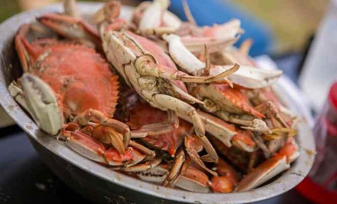 Ventnor Seafood