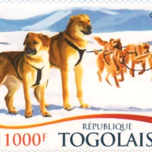 Illustrated dogs on african stamp