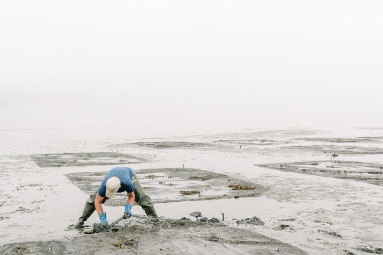 Man Clam Digging