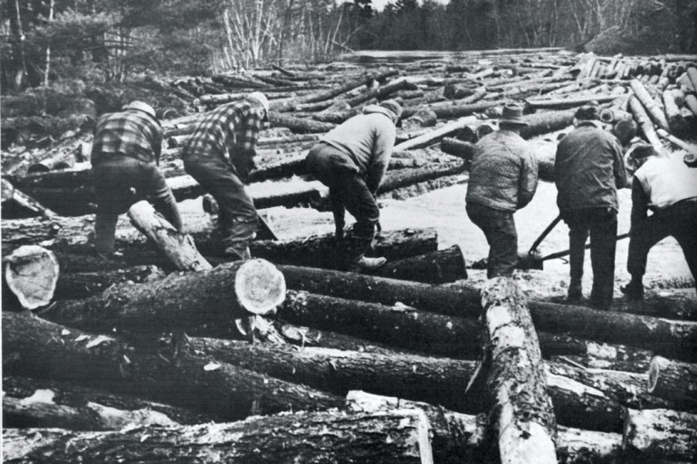 Old photo of loggers working on logs