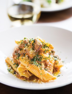 garganelli wood-oven lamb ragu with apricot
